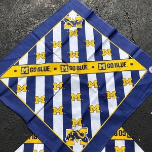 Vintage 1984 Michigan Wolverines Bandana Flag